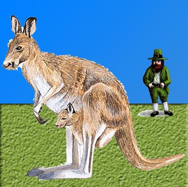 Irish Kangaroo